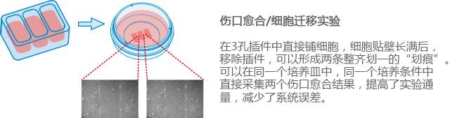 E_8XXXX_CI_3Well_image1副本.jpg