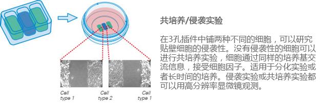E_8XXXX_CI_3Well_image3副本.jpg