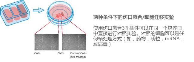 E_8XXXX_CI_3Well_image2副本.jpg